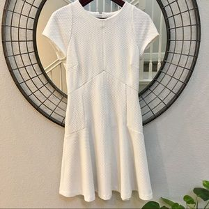 Banana Republic fit & Flare textured dress size 6